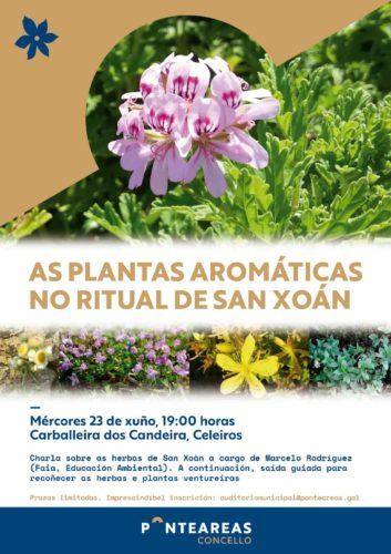 Este San Juan conoce y recoge las plantas aromáticas de esta fecha tan marcada con el Ayuntamiento de Ponteareas